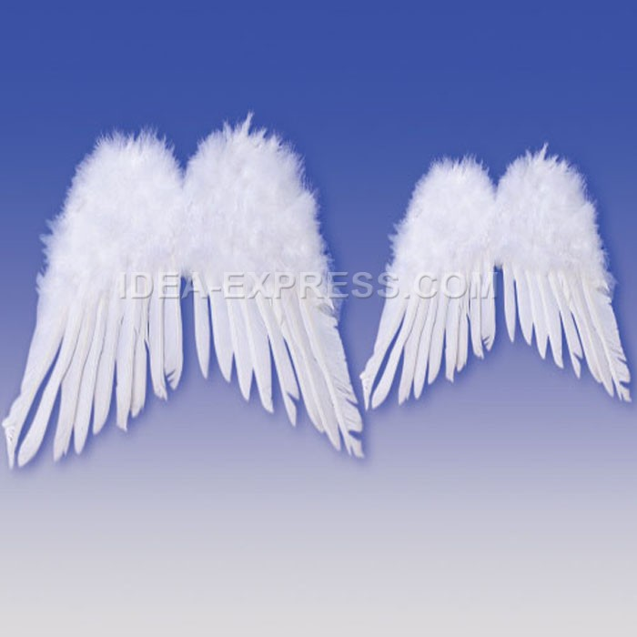 Adult Feather Angel Wings 33